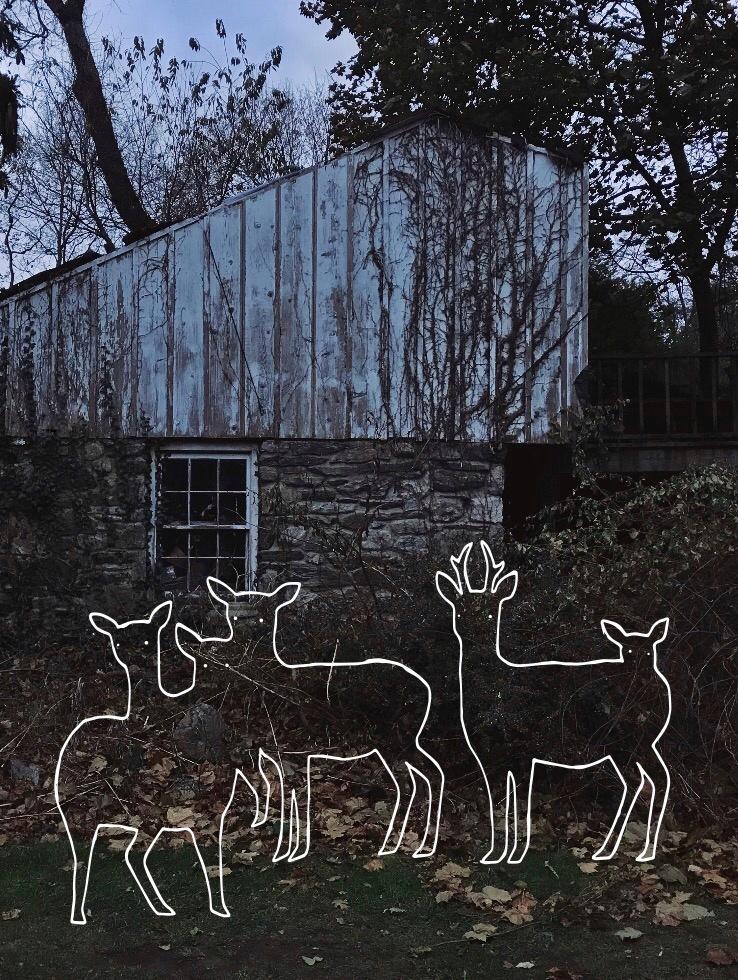 deer house.jpg