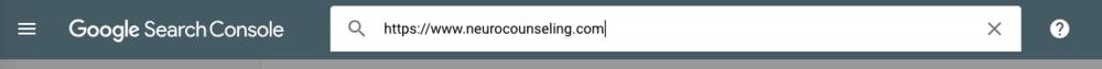 Google Enter URL.png