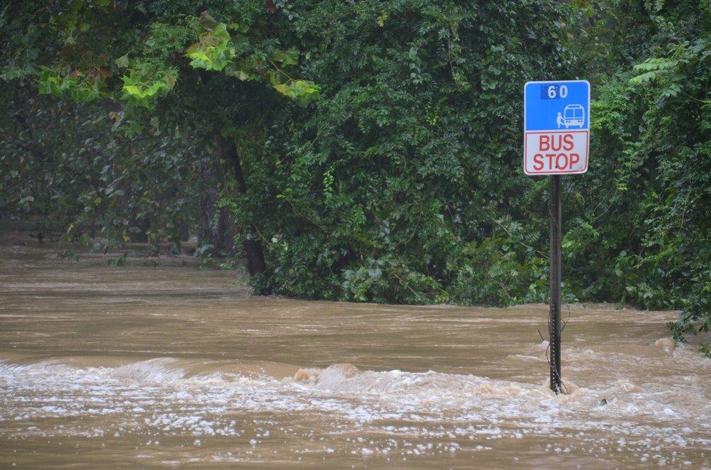 flood.2.jpg