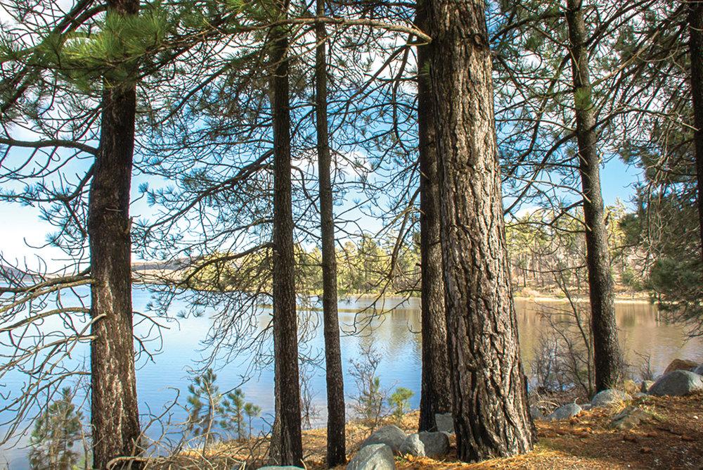 Lake Cuyamaca PHOTO BY LINDA TODD-LIMON