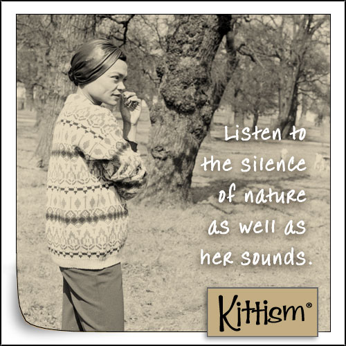 Kittism-replugged-silence-of-nature.jpg