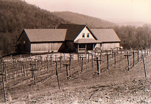 Hardscrabble Vineyard 1988