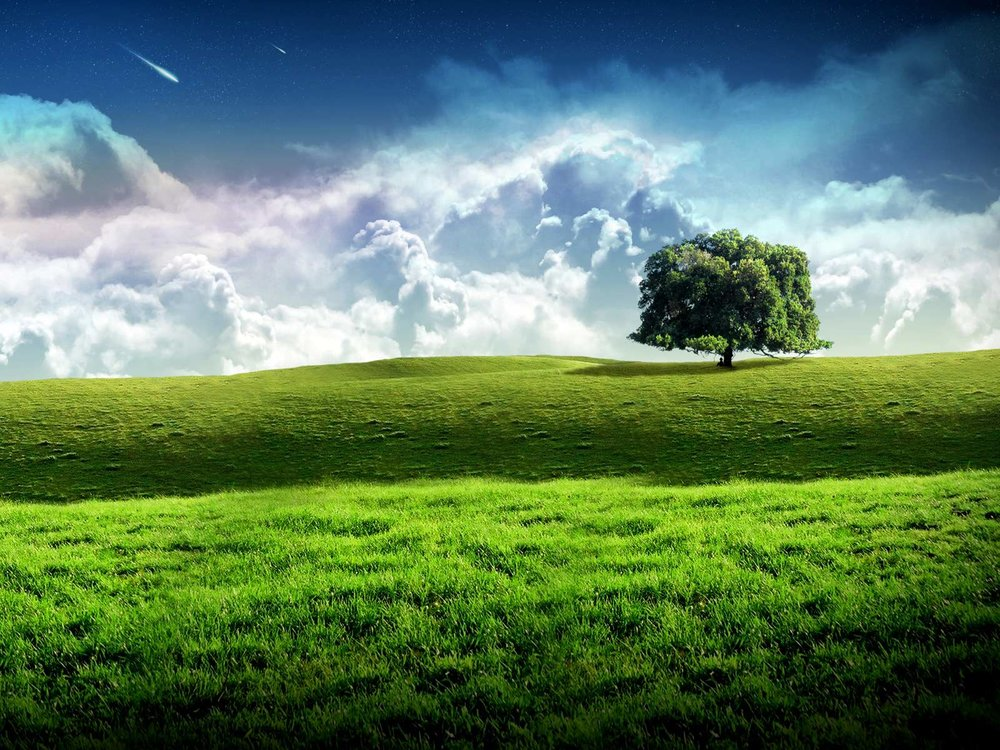 261109,xcitefun-relaxing-nature-scene-9.jpg