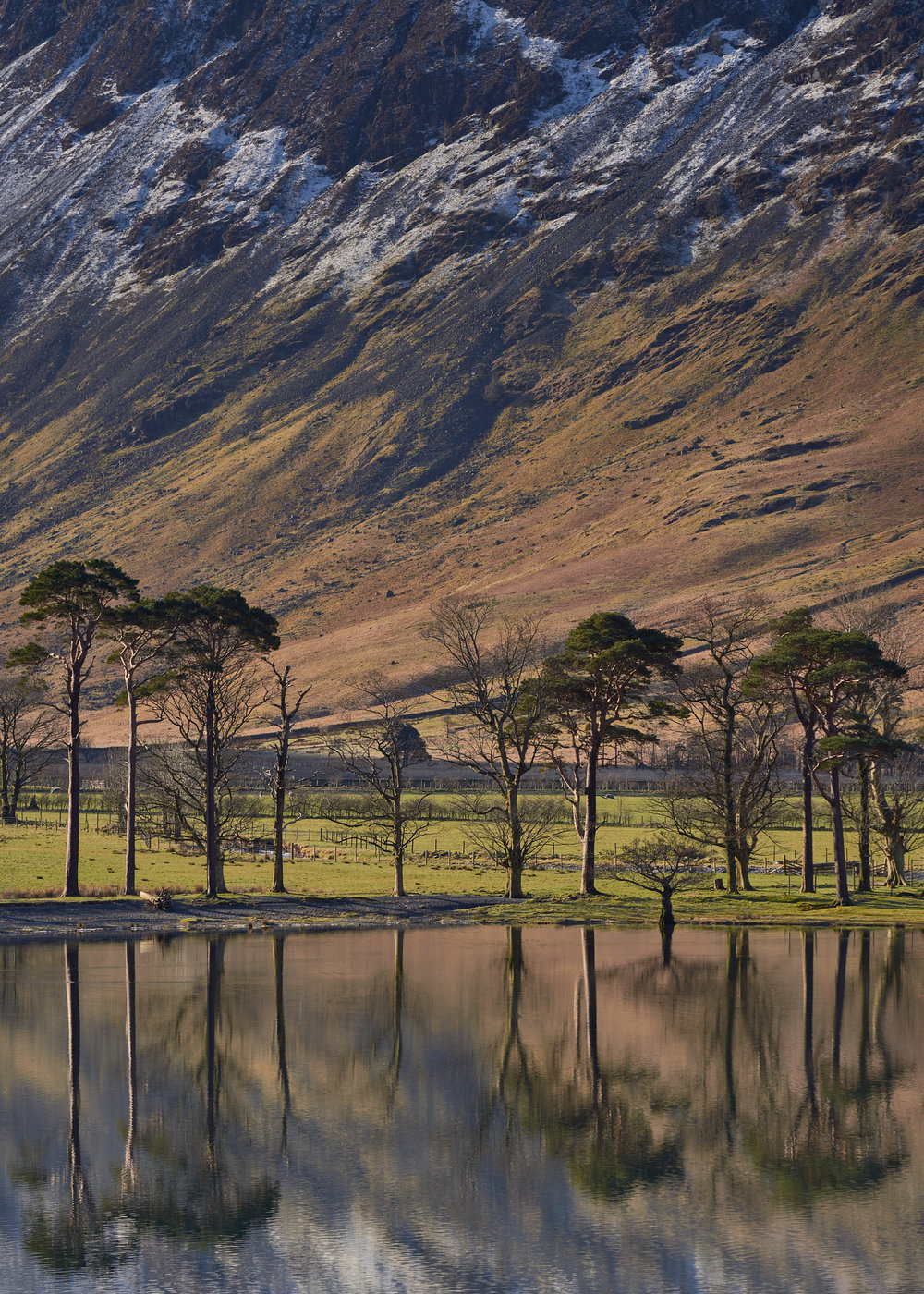 Famous View, Buttermere, Lake District