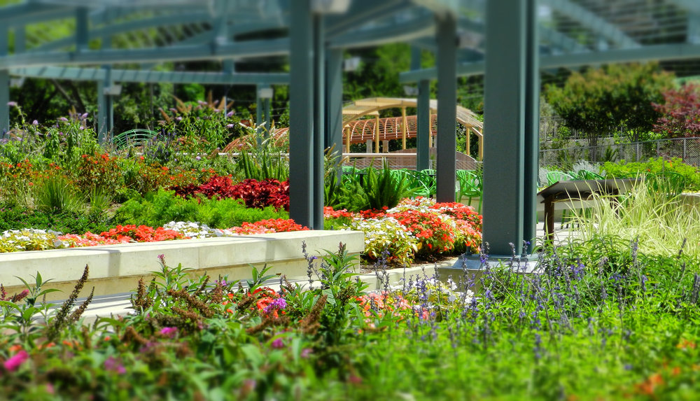 the oasis rooftopat thedallas arboretum -