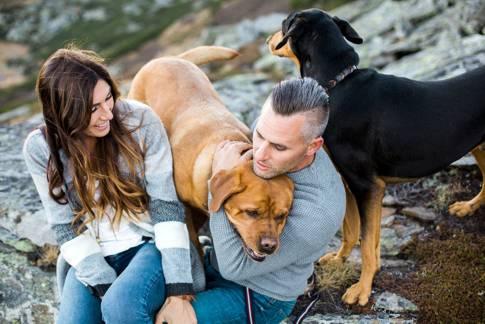 engagement-photo-shoot-dogs-austria-mountain-alpine-adventure-wedding-elopement-photographer-hochzeitsfotograf-kaernten-salzburg-osttirol
