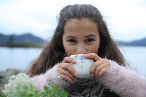 Winter Picnic With Chocolate Snowball Cookies Girl Folk