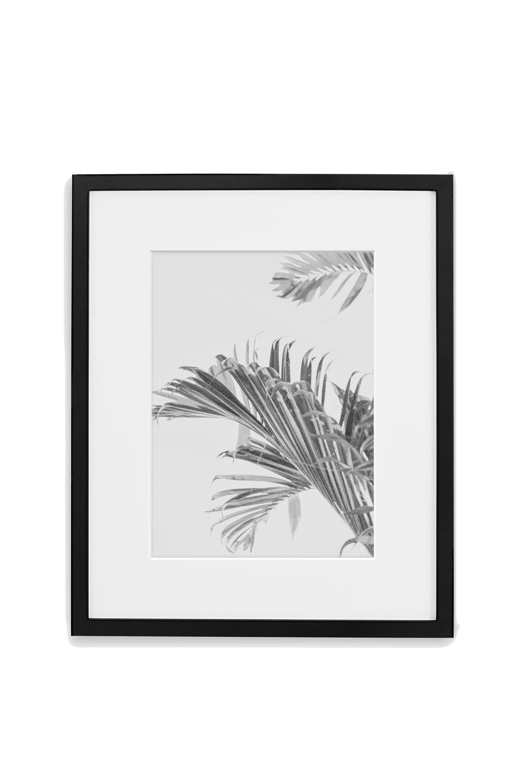 GALLERY_BLACK_palms.jpg