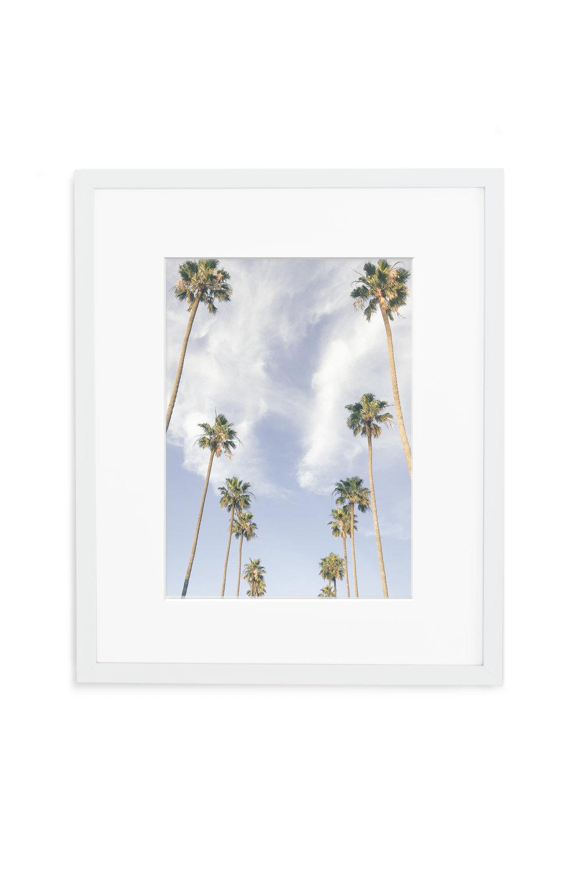 GALLERY_WHITE_Palms.jpg