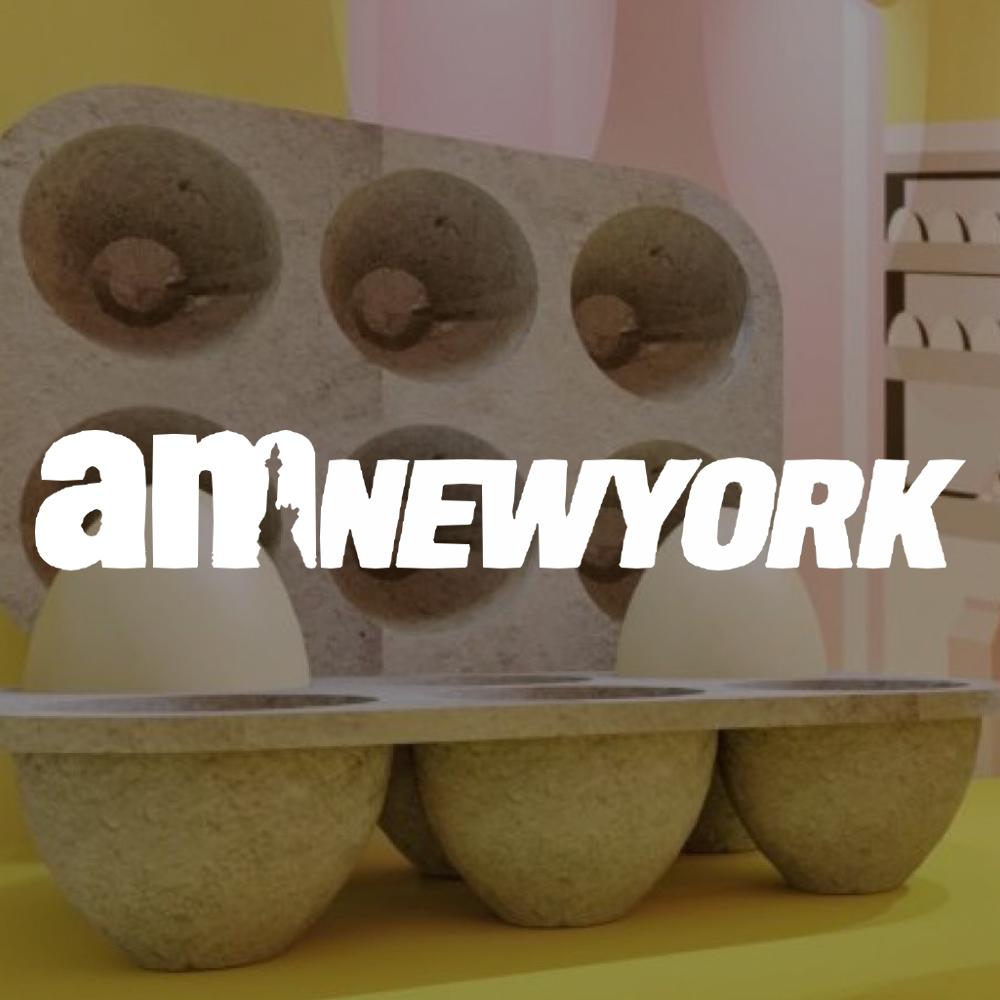 the-new-york-am-new-york.jpg