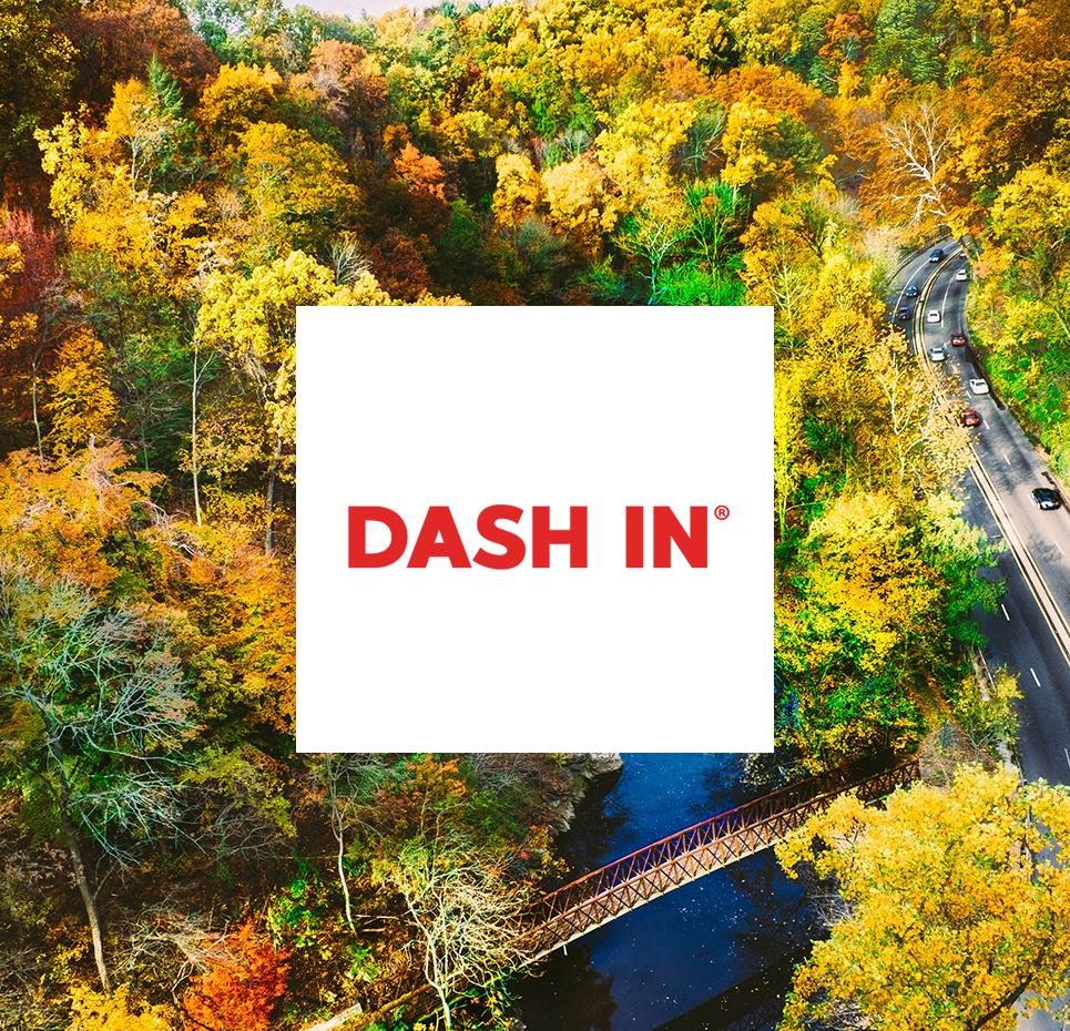 Dash In V2.png