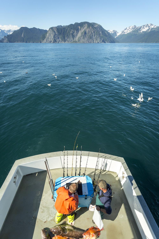 fishing_9222.jpg