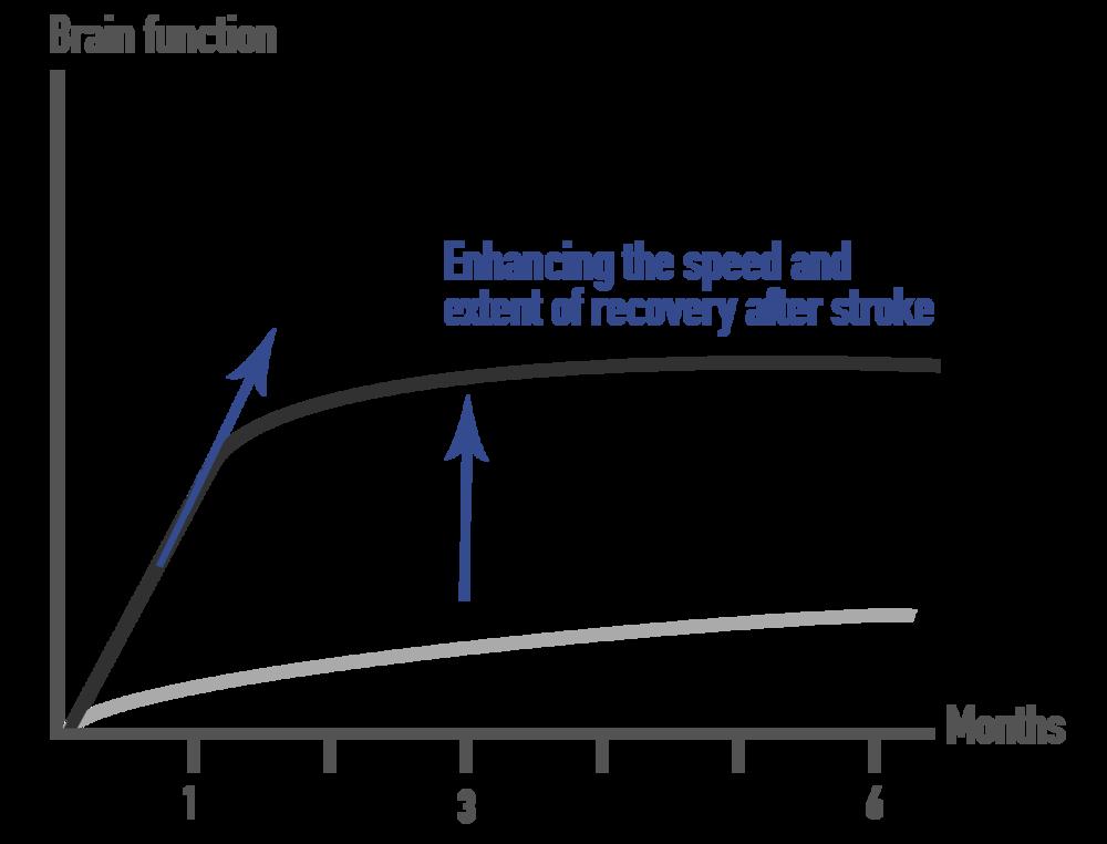 Uppdaterad graf.png