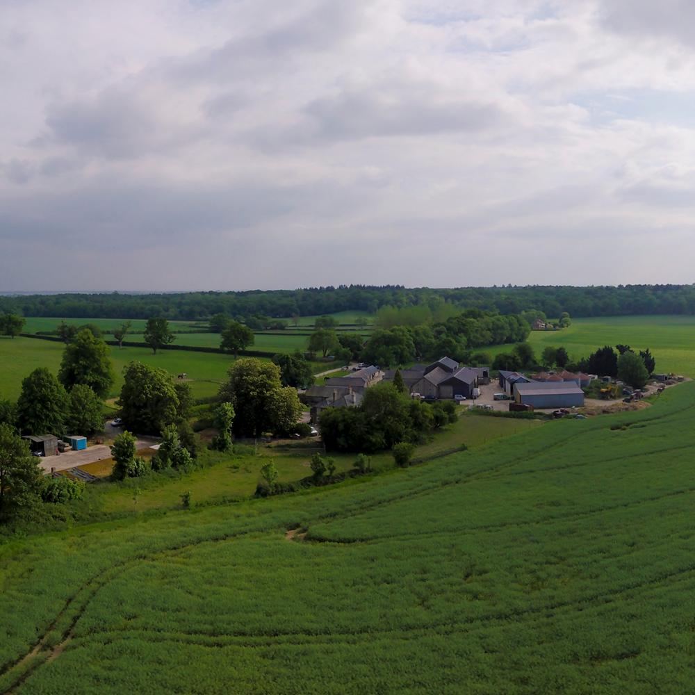 panorama-1.png