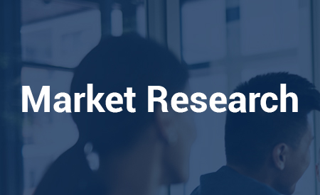 Market Research for US market entry