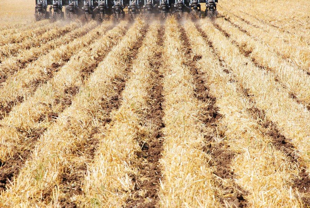 jordbruk4.jpeg