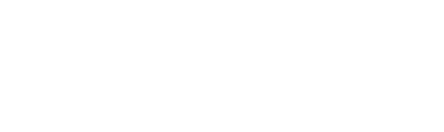 Warner Strategies