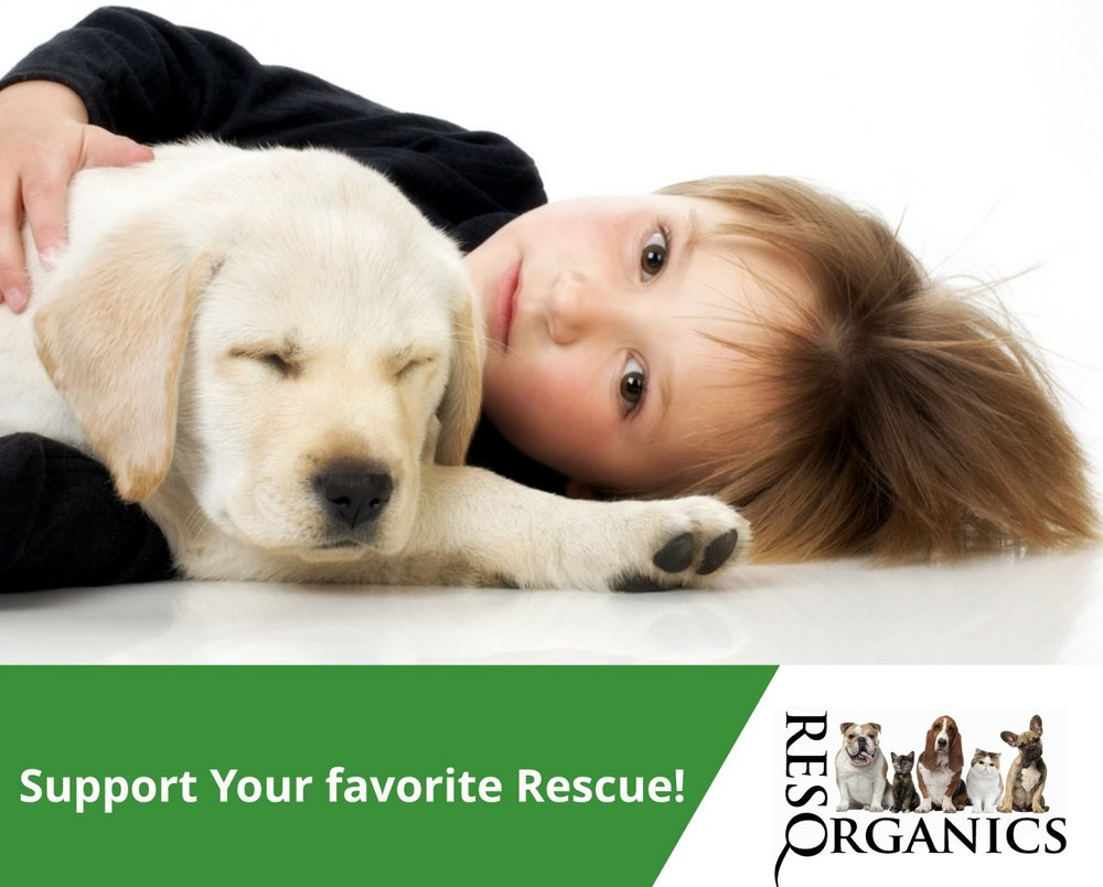Animal-Rescue-Fundraisers.jpg