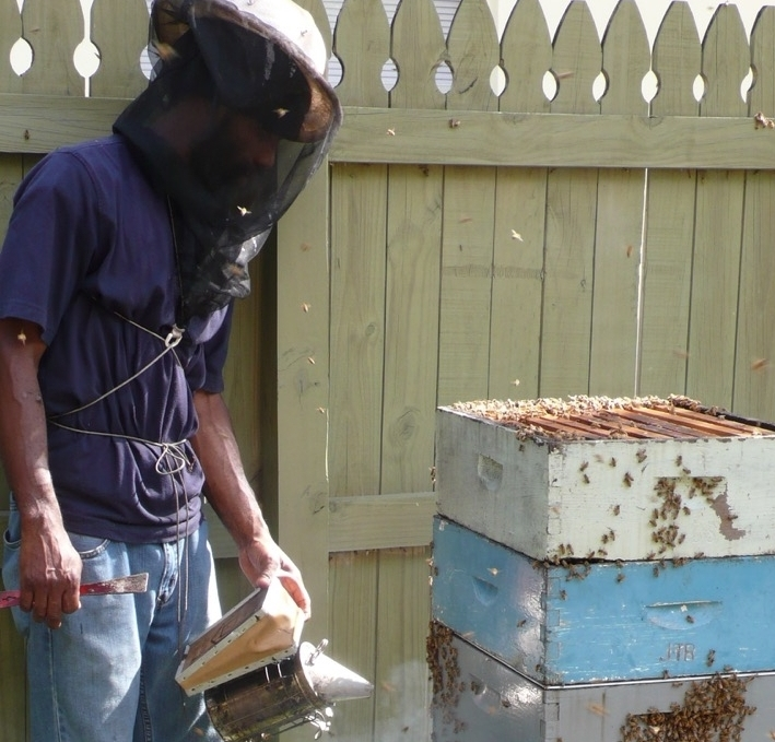 Keith the Beekeeper - Our Bee Keeper Keith hails from Jamaica and has a rare relationship with the bees he cares for.In addition to managing forty hives, Keith also raises the plants and herbs in our backyard farms.A vegan, Keith has a special interest in healthy living and eating. We think Keith's love of the Earth and its bounty contributes to the amazing flavors in our natural produce.Keith's particular talent is rearing queen bee's, a highly specialized process that is an essential part of beekeeping.