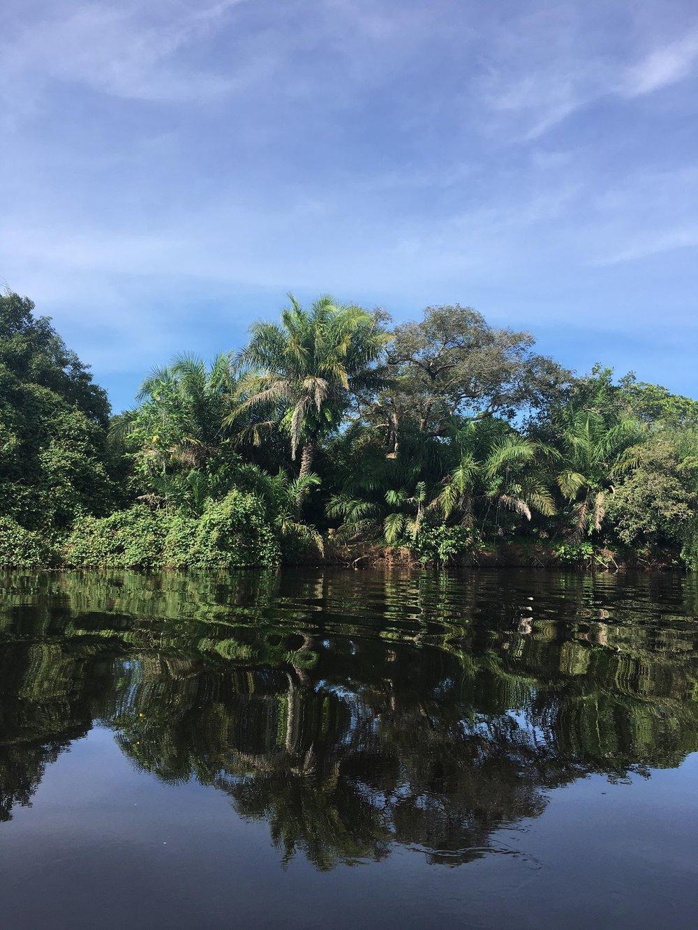Rio Negro Pantanal