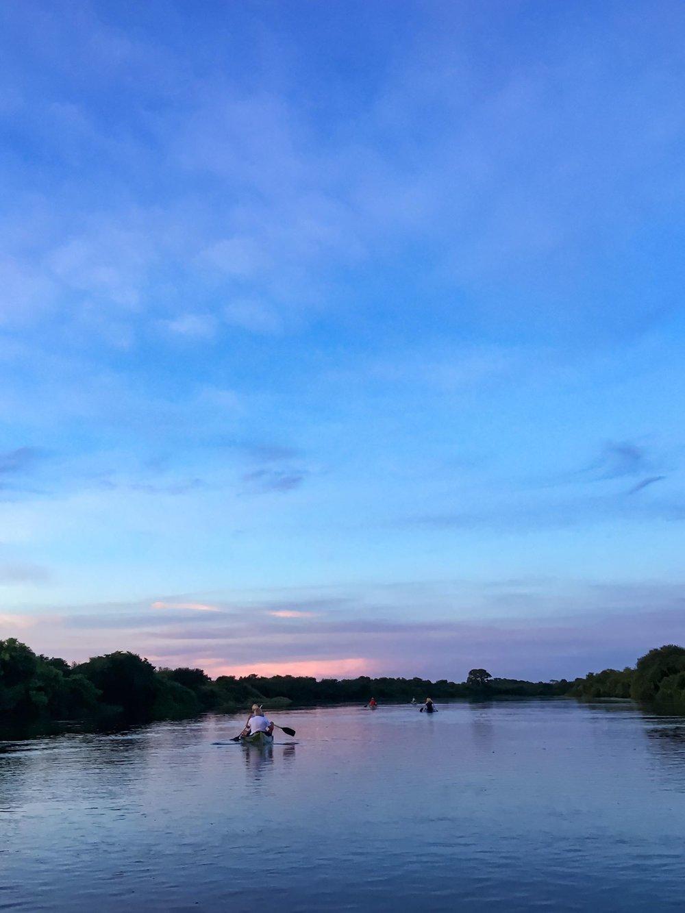 Rio Negro Pantanal Sunset