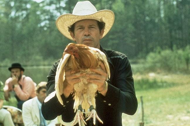 Warren Oates in  Cockfighter (1974)