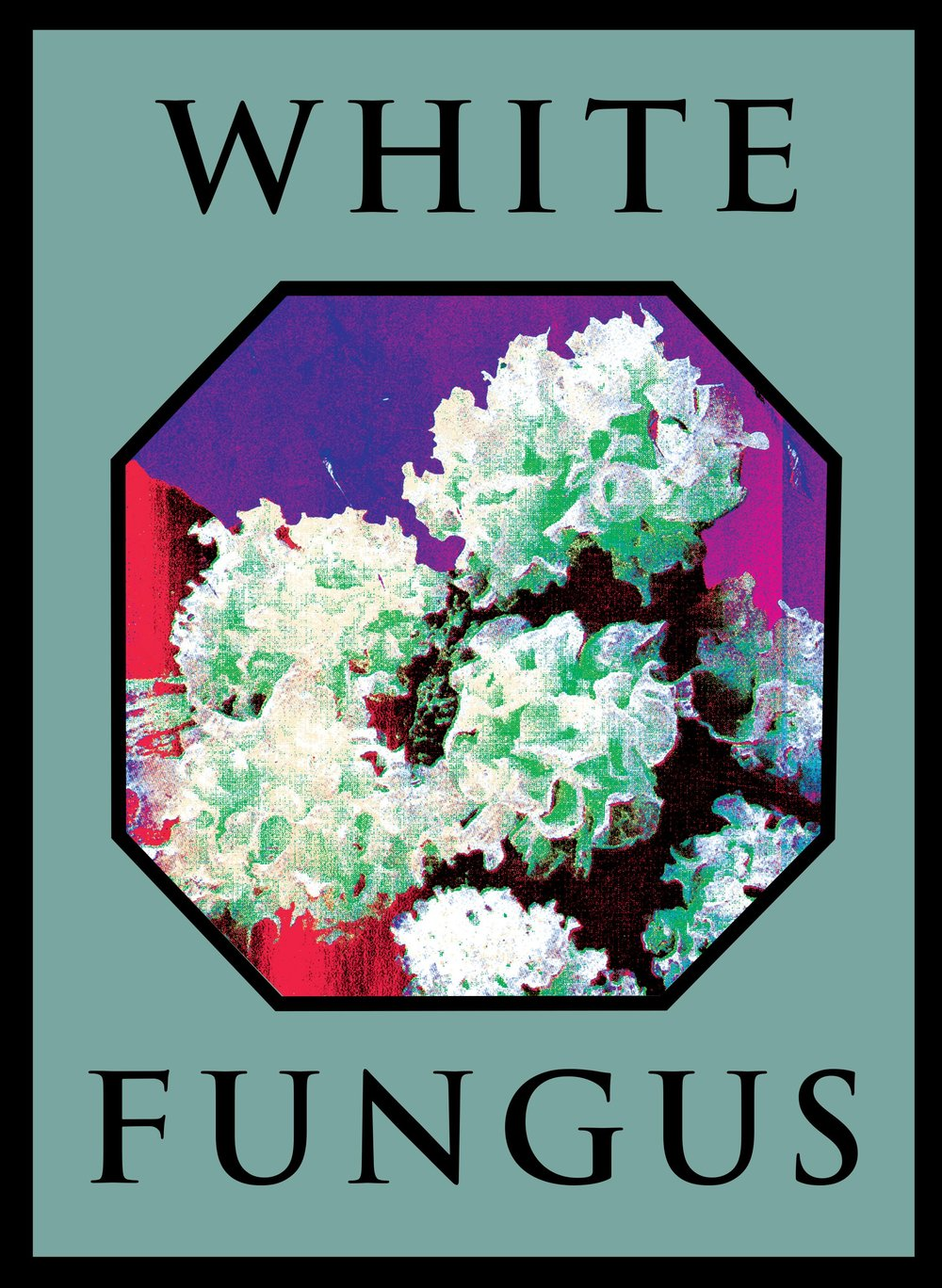 White Fungus   Issue 16. January 2019. $10.00