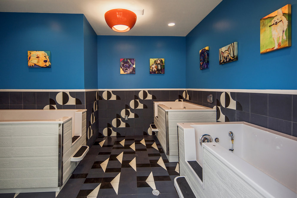 The_Park__Int_Amenities_PetSpa_Sep2017W[1].jpg