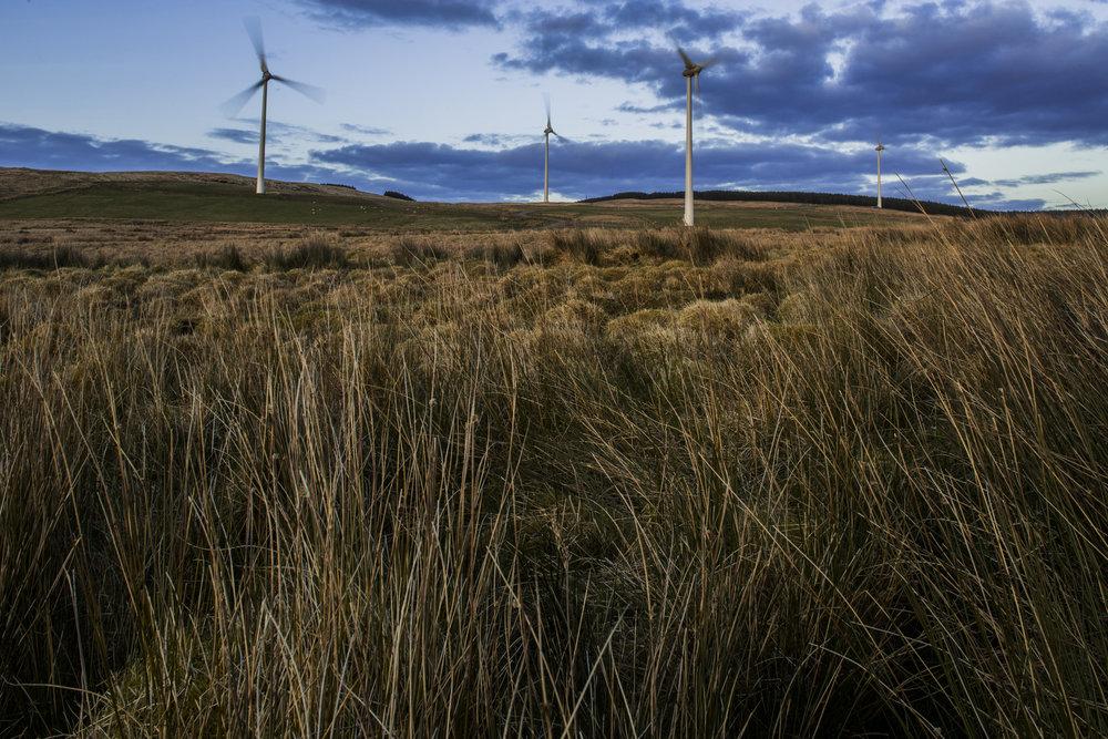 Renewable Energy-031x.jpg
