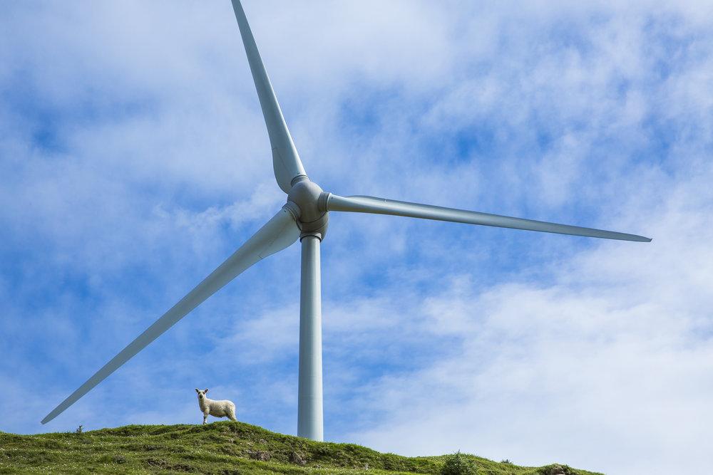 Renewable Energy-107x.jpg