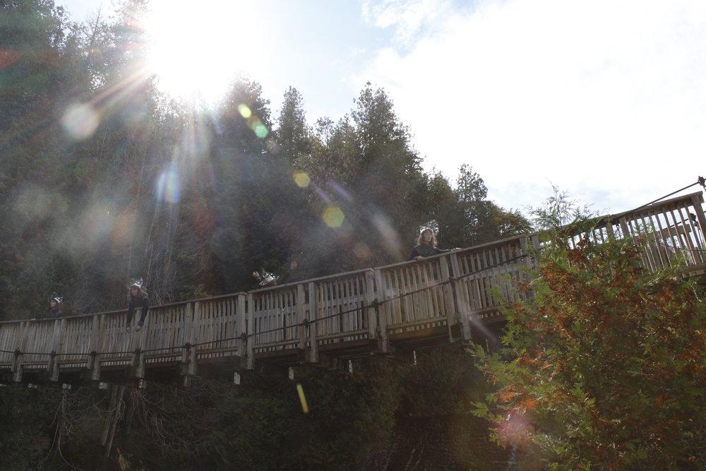 bridge scene copy.jpg