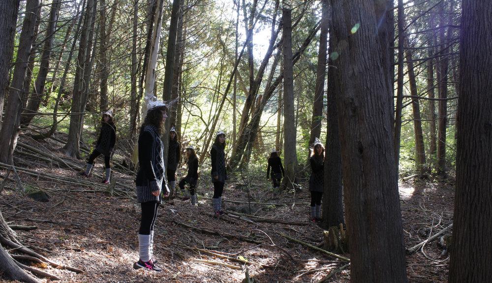 woods scene copy.jpg