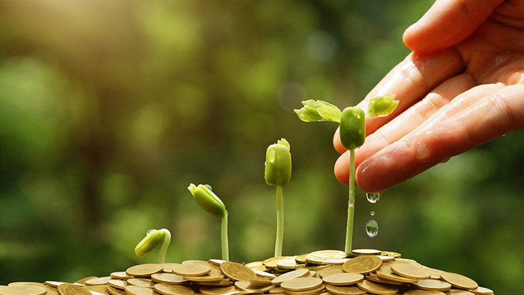 Customising-investments-to-manage-your-wealth.jpg