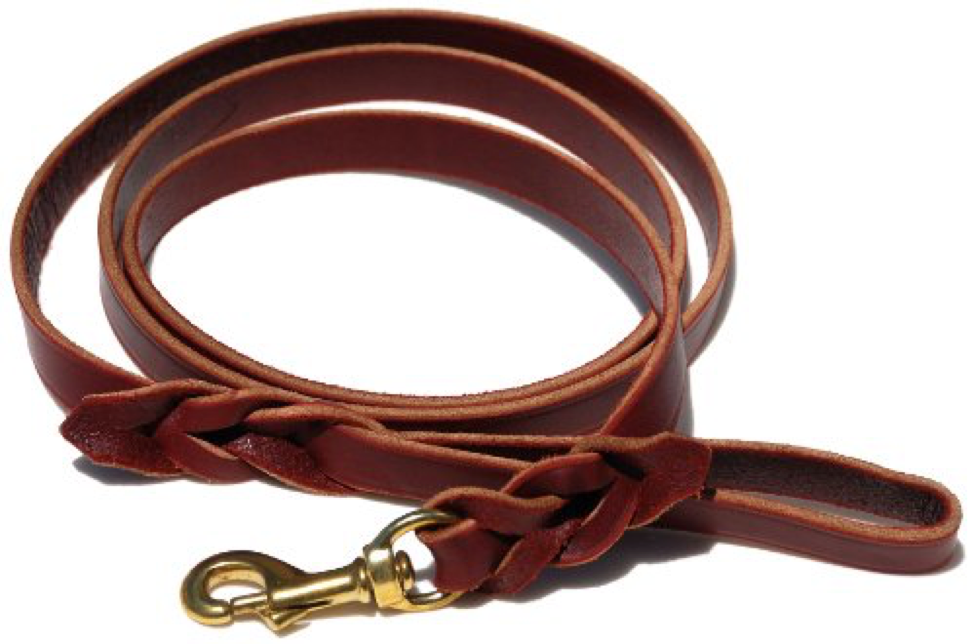 leather_leash.png
