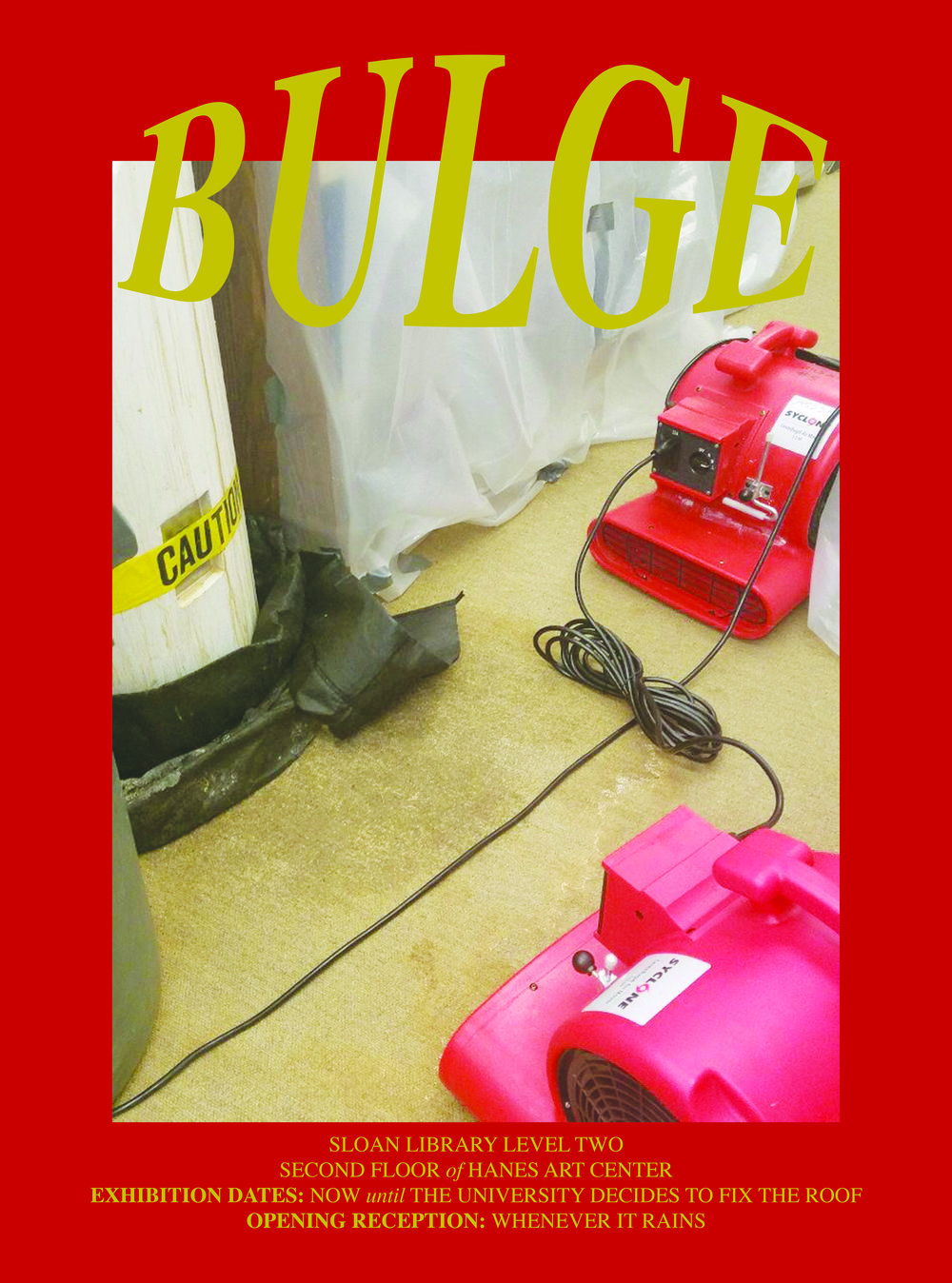 bulge poster 2.jpg