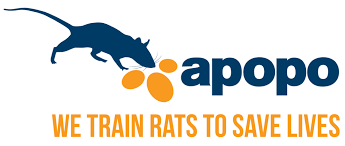 - APOPO US Inc, 1133 15th St NW SUITE 1200, Washington, D.C. 20005APOPO is a Belgian NGO that has developed an innovative system deploying African giant pouched rats (nicknamed HeroRATs) to detect landmines or tuberculosis, using their extraordinary sense of smell. APOPO's scent detection technology has a massive potential to relieve human suffering and promote development when deployed in TB and landmine response, as well as in currently unexplored fields. APOPO has programs in Tanzania, Mozambique, Angola and Cambodia.