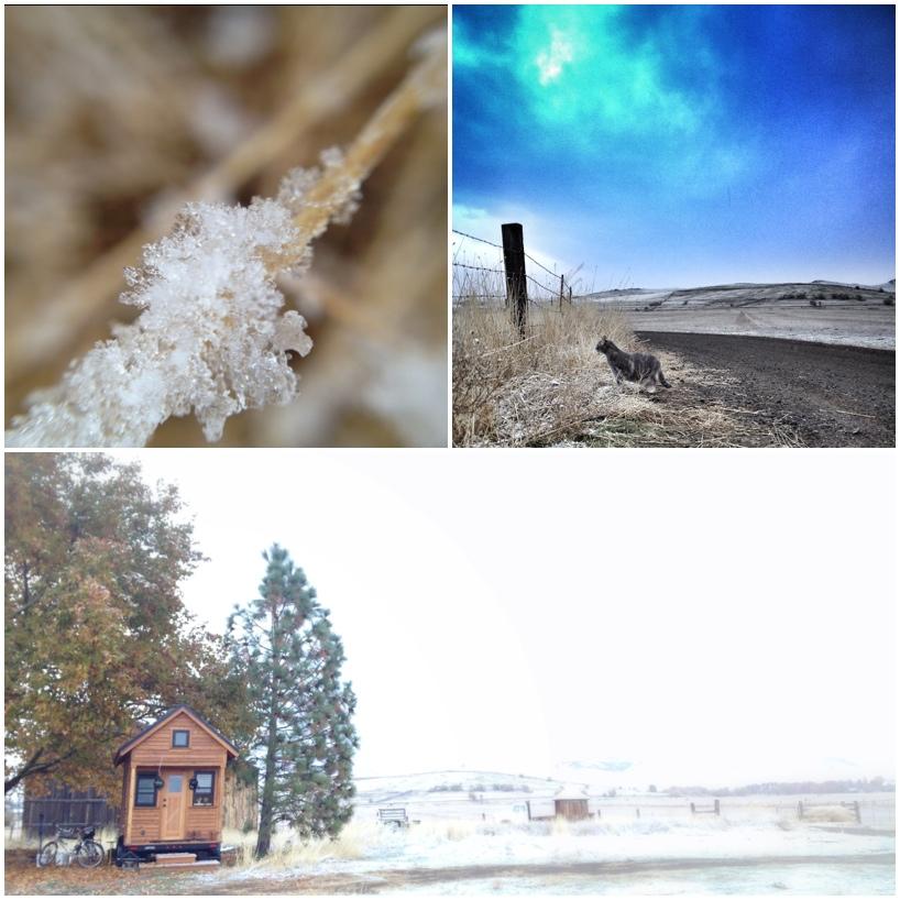 First-snow-3.jpg