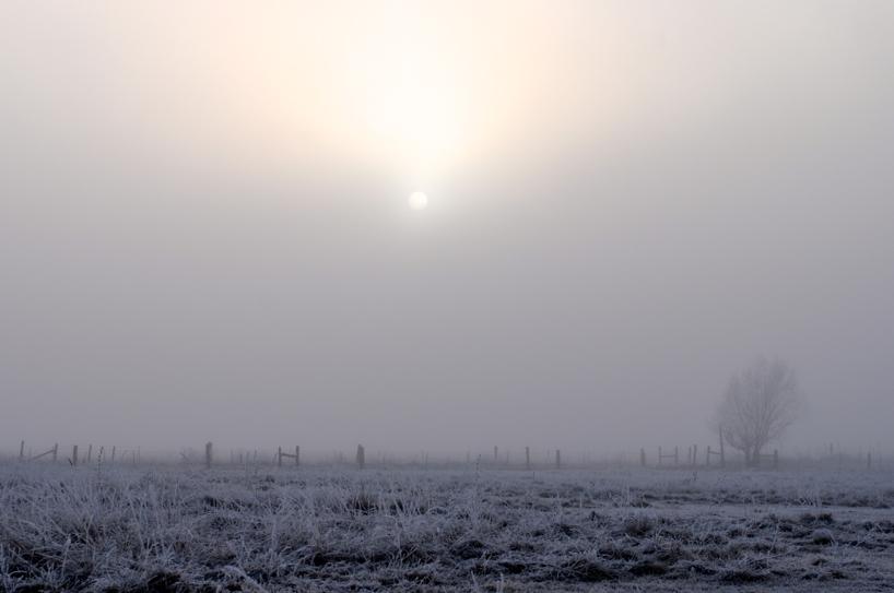freezing-fog.jpg