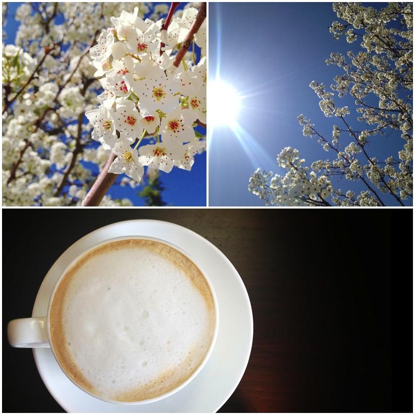 Flowers-and-Coffee.jpg