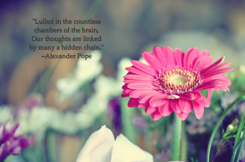flower-love.jpg