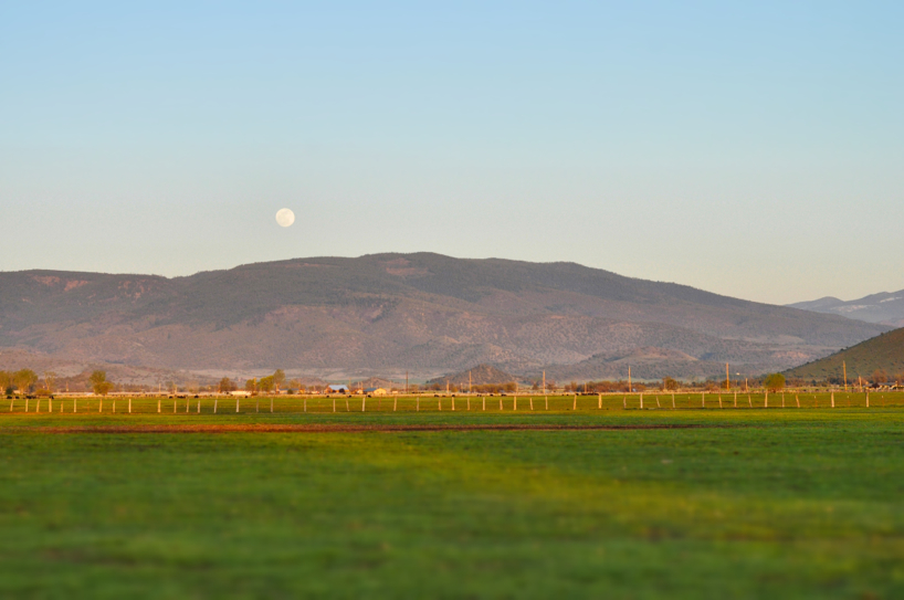 full-moon1.jpg