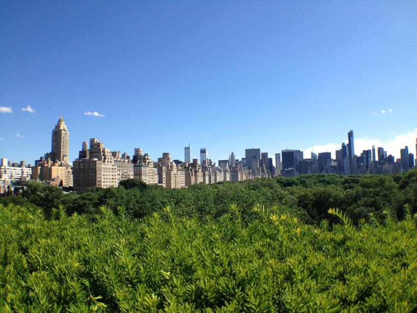 The-Met-rooftop-garden-.jpg
