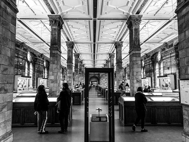 Cette photo me donne envie de faire un pas de côté 😁  #londres #london #nationalhistorymuseumlondon #travel #voyage #blackandwhite #noiretblanc #musee