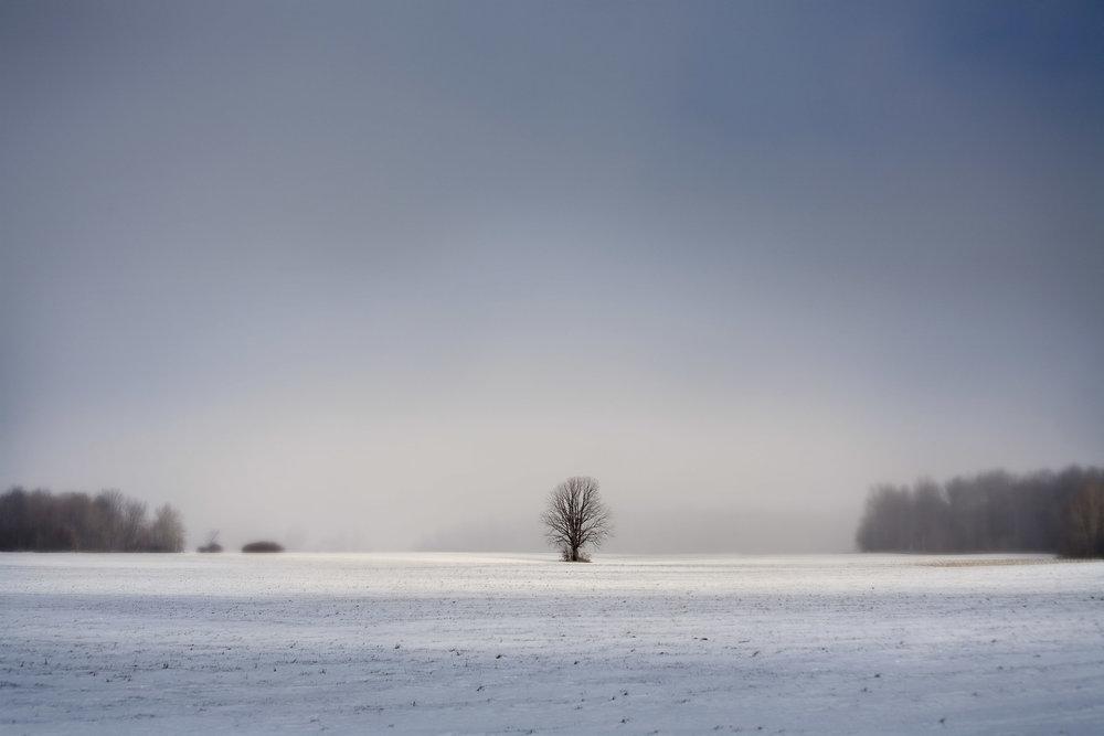 Lone tree, Nebraska