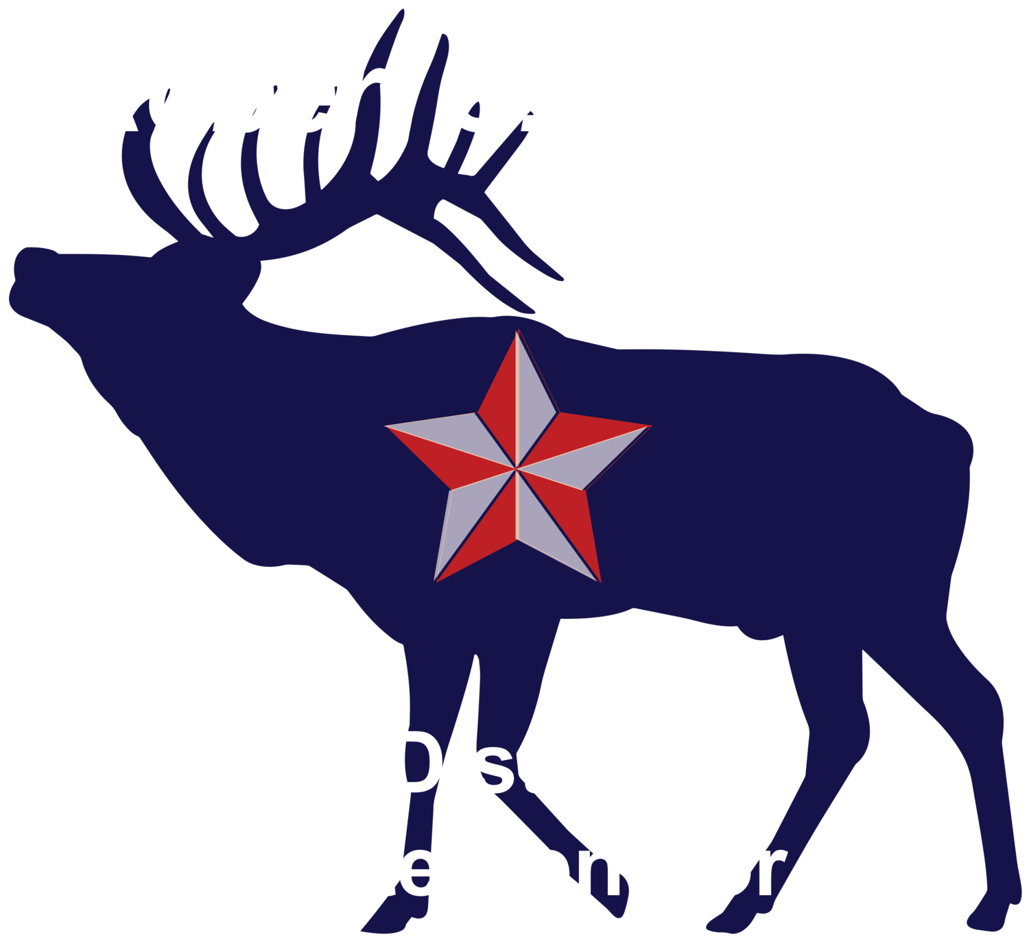 Robert  S. Nielsen For District 34 State Senator