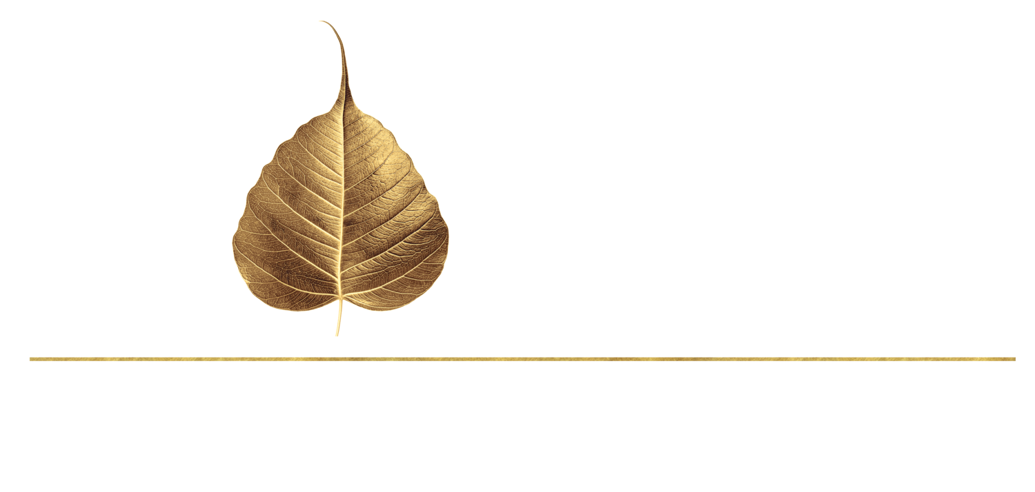 Bodhi Spa and Wellness