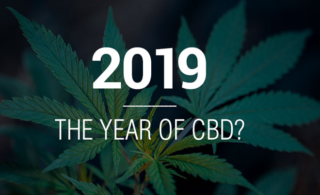 cbd 2019