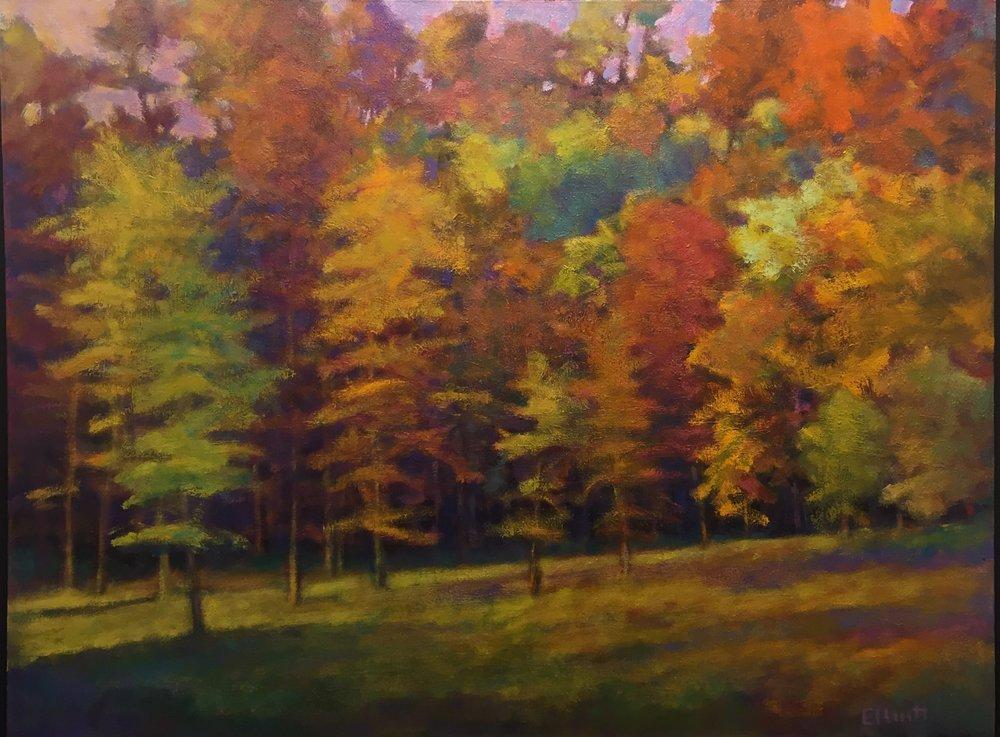 - Fall Arrayed (30x40) $4700