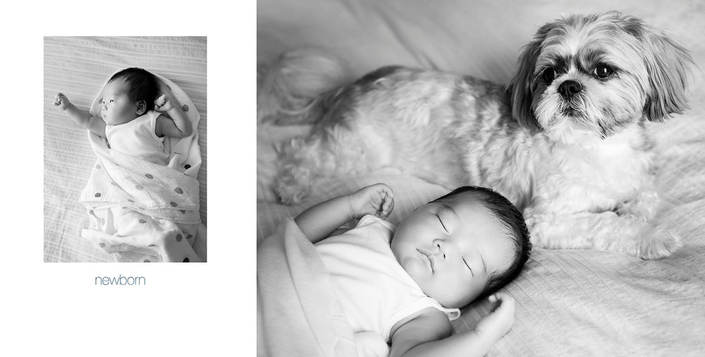 Maureen+Ford+Photography+Album+Babys+1st+year+0002.jpg