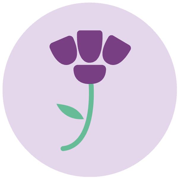 Logo de Women Revolution -